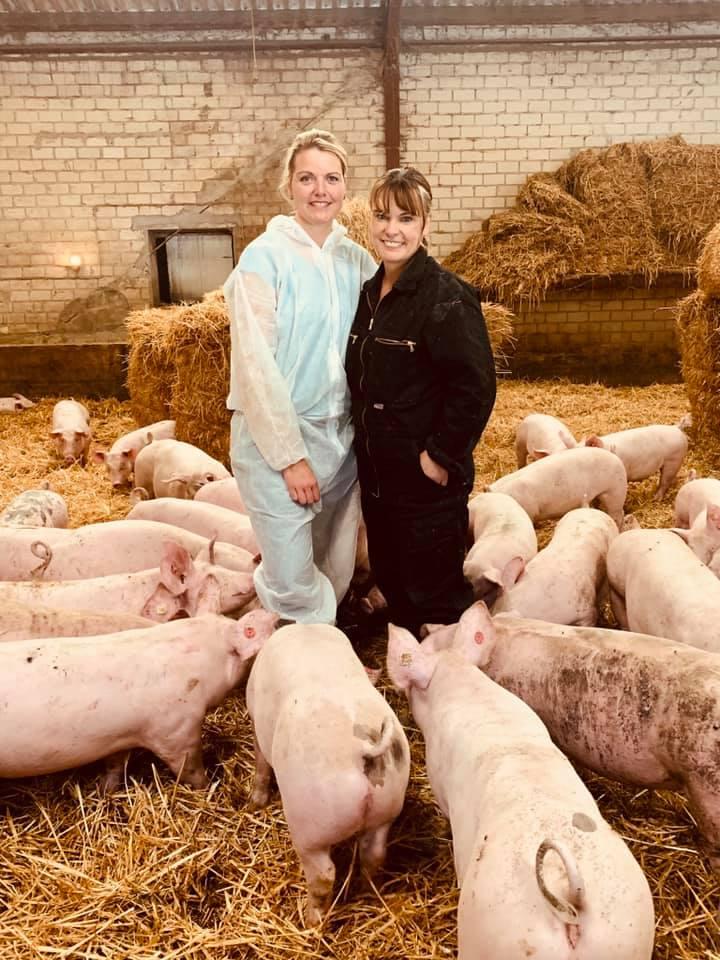 Gespräch mit Gabriele Mörixmann vom Aktivstall für Schweine